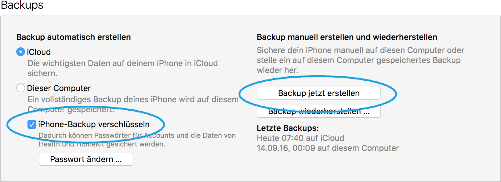 iPhone iTunes Backup starten